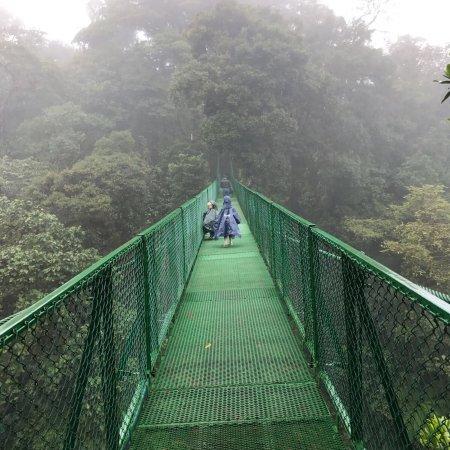Selvatura Canopy Tour Tripadvisor