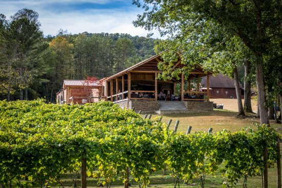 Blue Ridge, GA: Bear Claw Vineyards