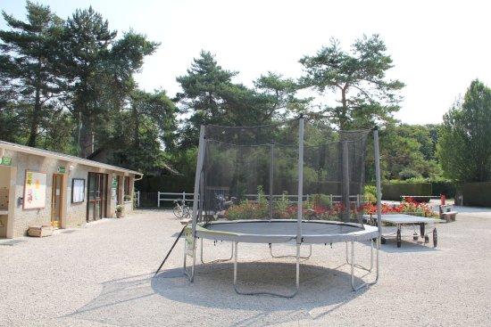 Boulancourt, ฝรั่งเศส: Place du camping