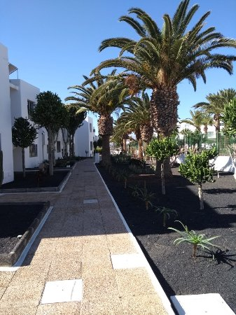 Hotel Floresta: IMG_20180102_115956121_large.jpg