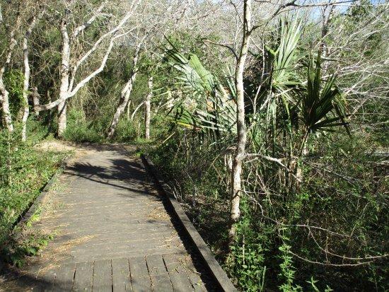 Resaca de la Palma State Park