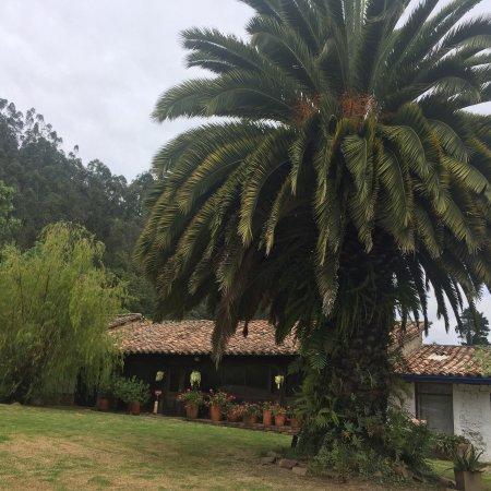 Finca San Pedro: photo2.jpg