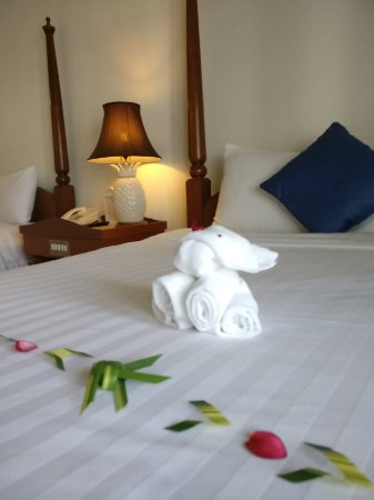Andaman Seaview Hotel: IMG_20171217_135741_large.jpg