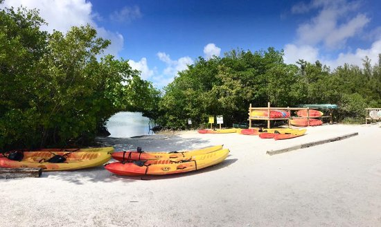 North Miami Beach, FL: paddle boarding and kayaking