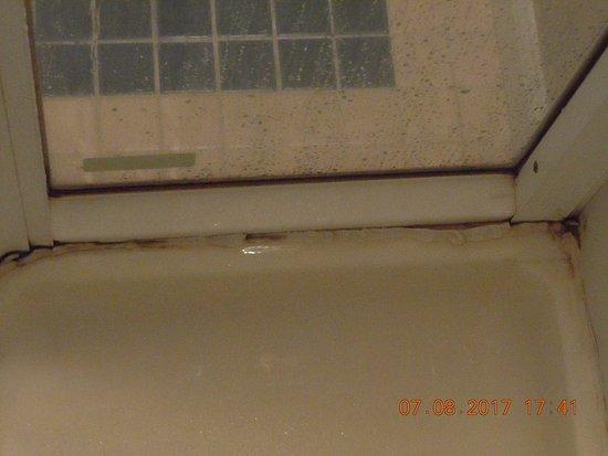 Clymer, NY: mold in shower off bedroom
