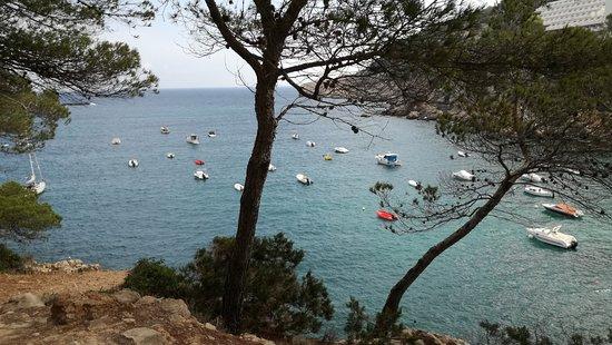 Playa de Es Figueral: sentiero