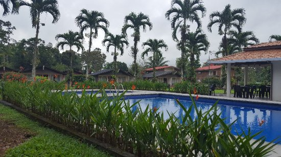 Eco Arenal Hotel: 20180110_075205_large.jpg