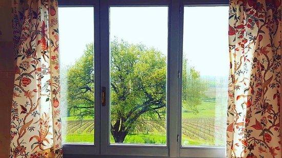 Valiano, Italia: bathroom window