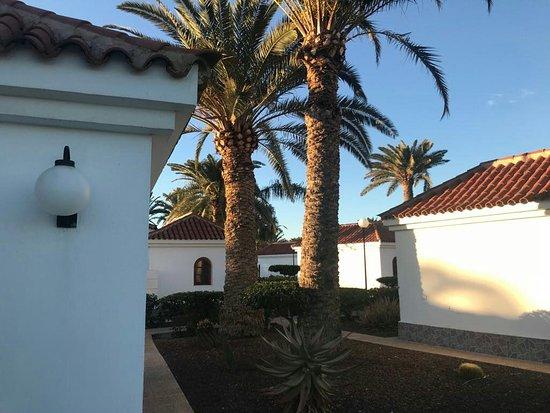Img 20180104 wa0018 picture of eo suite hotel jardin dorado maspalomas tripadvisor - Bungalows jardin dorado ...