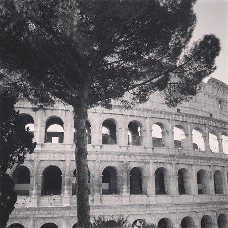 Guida Turistica Carla Ciccozzi