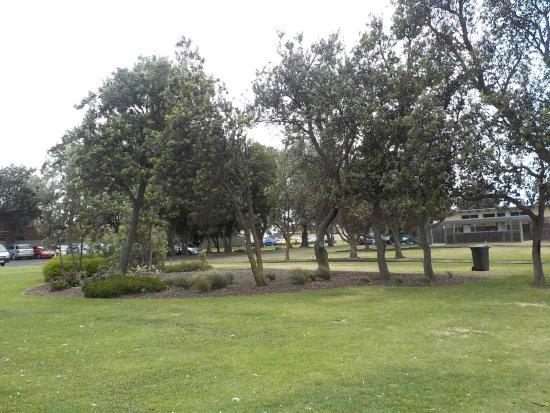 Weaver Reserve