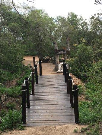 Manyeleti Game Reserve, South Africa: Entrance