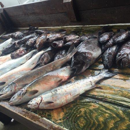 Captain steve 39 s fishing lodge ninilchik for Captain steve s fishing lodge