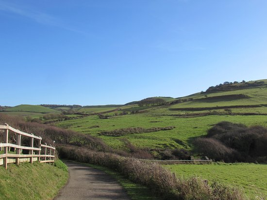 Chideock, UK: Take the bridle path from the B&B to the beach
