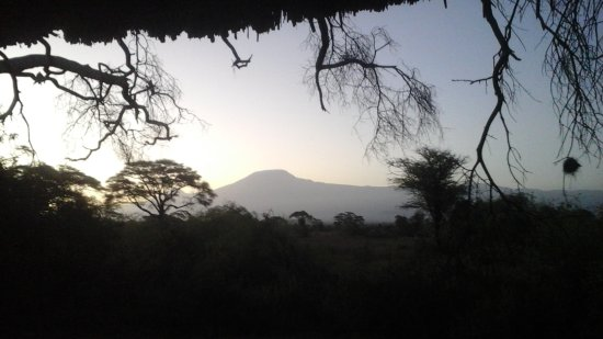 Tortilis Camp: Kilimanjaro from my tent!