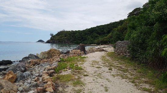 Castaway Island Day Trip: 20180110_122519_large.jpg