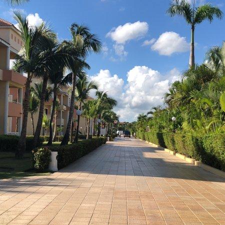 Grand Bahia Principe Punta Cana : photo6.jpg