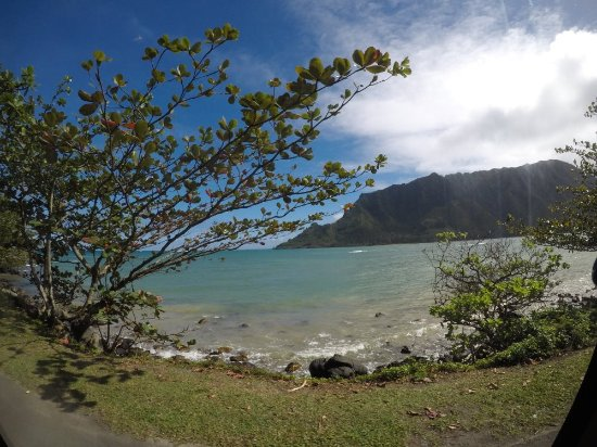 What Is The Best Hawaiian Island To Visit In January
