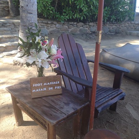 Vallarta Adventures - Las Caletas Beach Hideaway : photo0.jpg