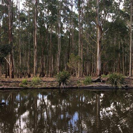 Ravensbourne, Australia: photo4.jpg