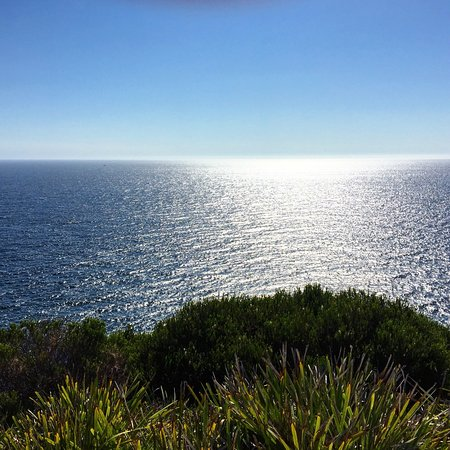 Seal Rocks, Australien: photo1.jpg