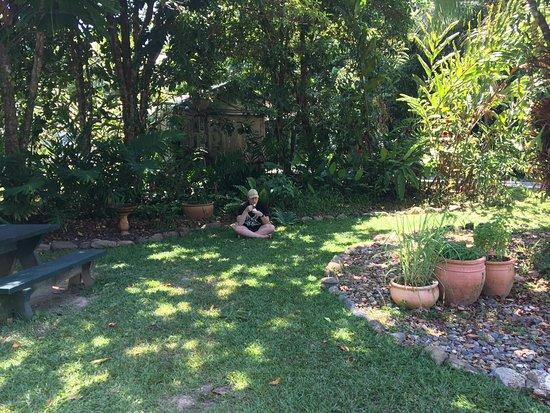 Diwan, Австралия: Shady spot in the garden