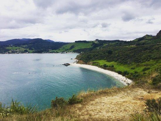 Mangonui, Nova Zelândia: Amazing view guarenteed
