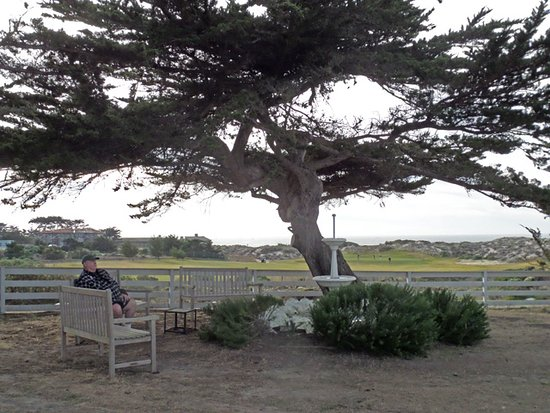 Point Pinos Lighthouse : seating outside the lighthouse