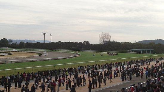 Kyoto Horse Racetrack : 京都競馬場 4コーナー合流地点