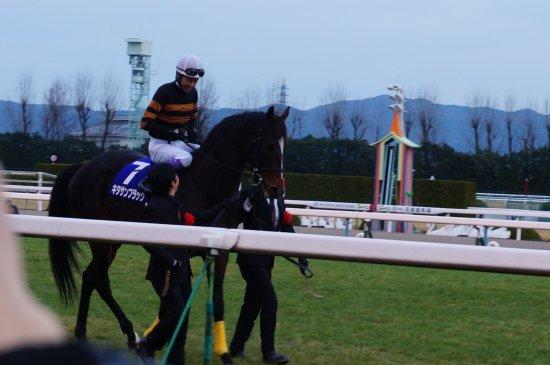 Kyoto Horse Racetrack : 引退式 キタサンブラック号