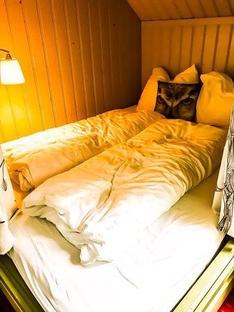 Boxmeer, The Netherlands: Bett