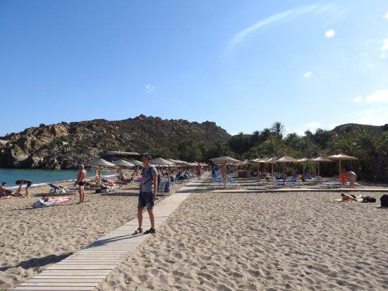 Vai, Greece: Пляж Ваи (пальмы очень далеко от моря)