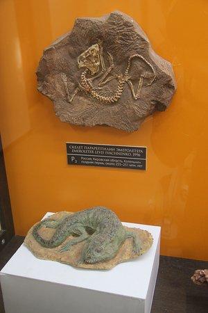 Vyatskiy Paleontologic Museum