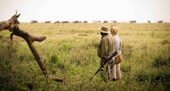 Arusha, Tanzania: walking Safari