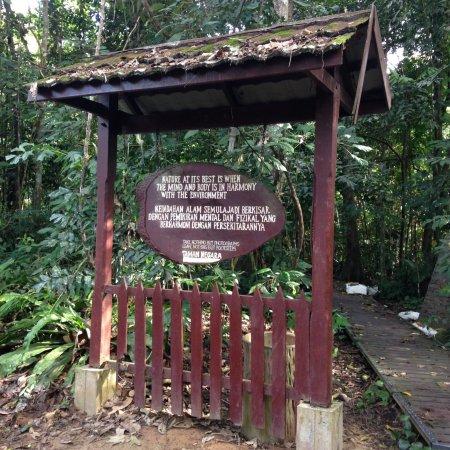Kuala Tahan, Malaysia: Kleine impressie van het resort en de activiteiten.