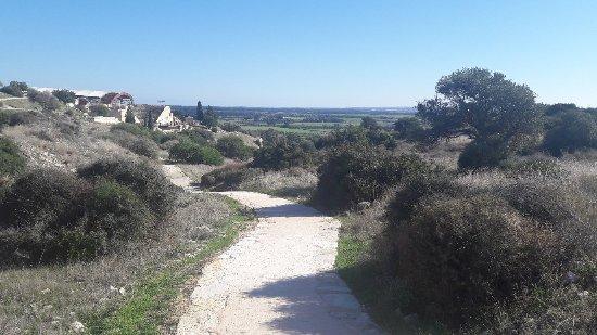Episkopi, Cyprus: 20180108_124657_large.jpg