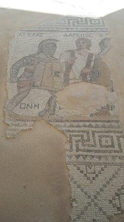 Episkopi, Cyprus: 20180108_122007_large.jpg