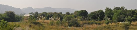 Khem Villas: Tents overlooking Ranthambhore and open grassland. Great place to relax and enjoy the wildlife