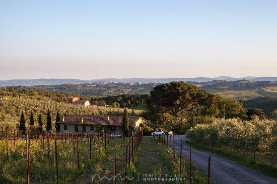 Fattoria di corsignano castelnuovo berardenga italie for Piani di fattoria ranch