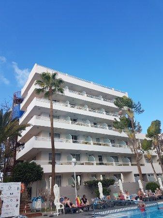 Hotel Playa De Oro Website