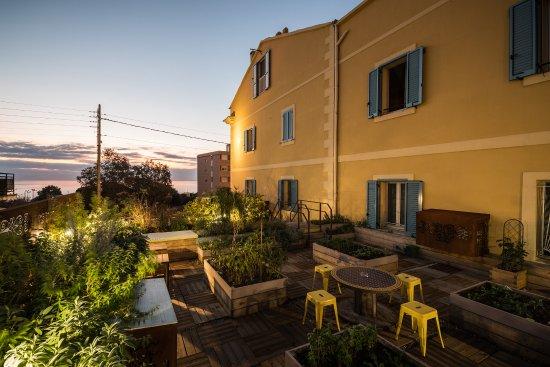 Sud Hotel : Jardin urbain en roof-top avec potager Bio