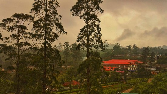 Tea Hills Bungalow: IMG_20180110_175846-01_large.jpg