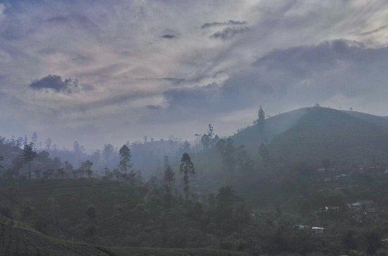 Tea Hills Bungalow: IMG_20180110_185024_834_large.jpg