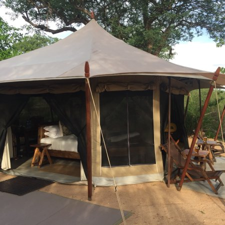 Ruaha National Park, Tanzania: Safari perfection!