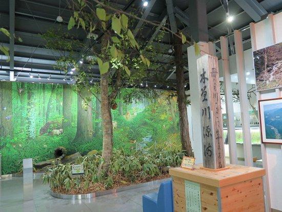 Kiso-mura, Giappone: 展示の様子
