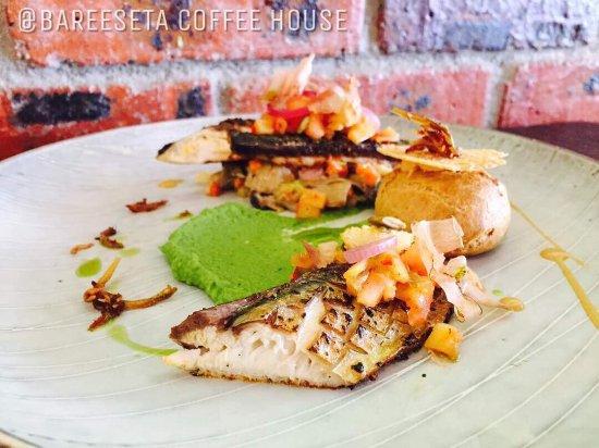 Mackerel Mamacita