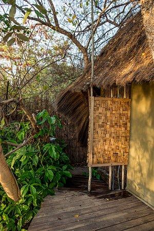 Caprivi Region صورة فوتوغرافية