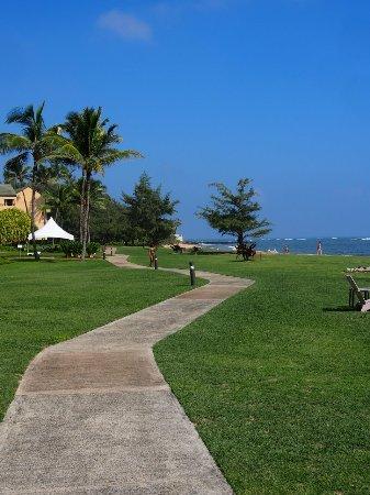 Courtyard Kaua'i at Coconut Beach: PB020025_large.jpg