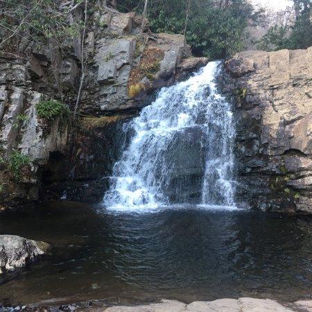 Hickory Run State Park: photo3.jpg