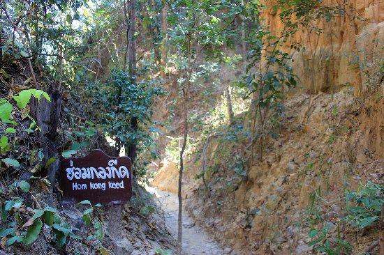 Doi Lo, تايلاند: Pha Chor